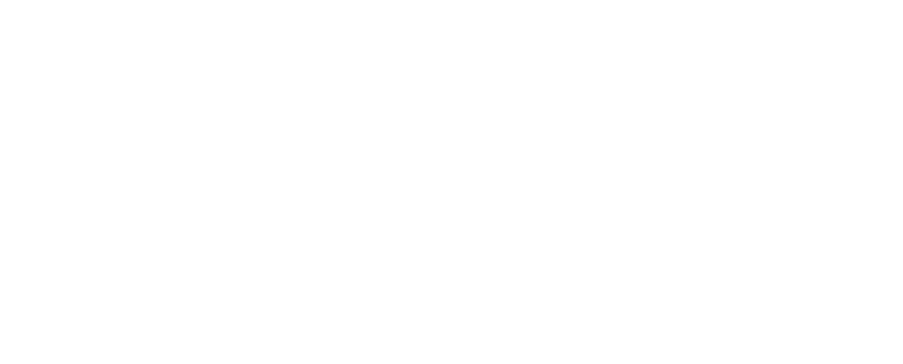 Page - Name Weasel - Logo